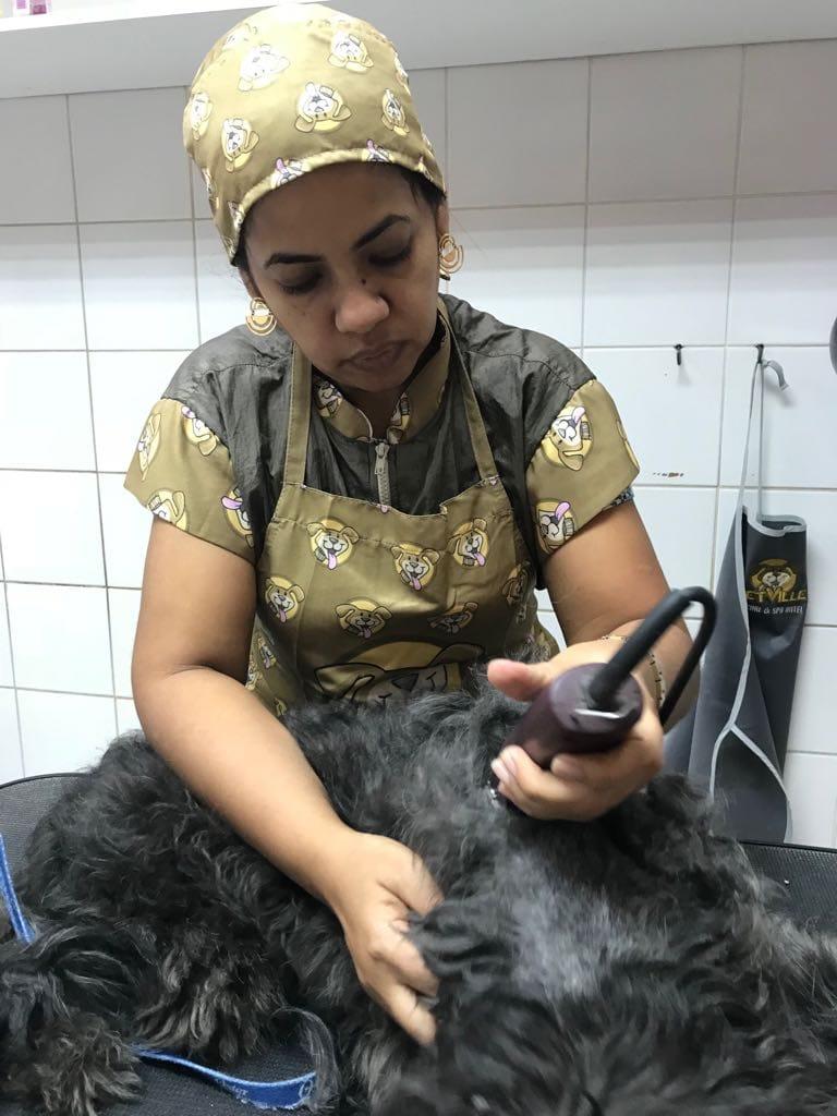 Cortar O Pelo Do Cachorro Ajuda Diminuir O Calor?